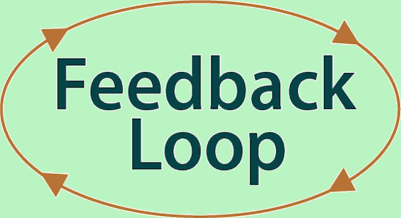 How to Create an Effective Feedback Loop for Success